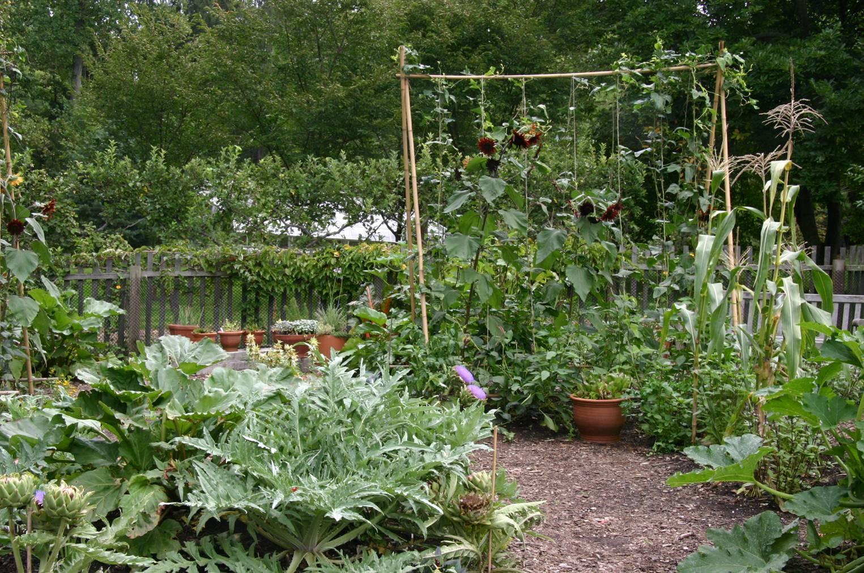 1525 1013 potager garden pinterest